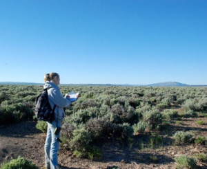 IMBCR field scientist counts birds at a survey location.