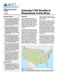 CEAP_insight_mixed_grass_cover