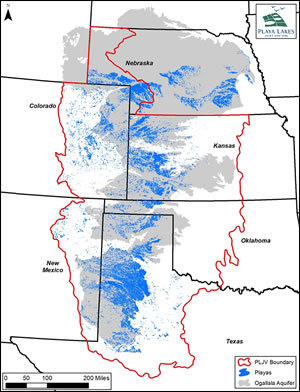 More than 80,000 playas overlay and, when healthy, recharge the Ogallala Aquifer.